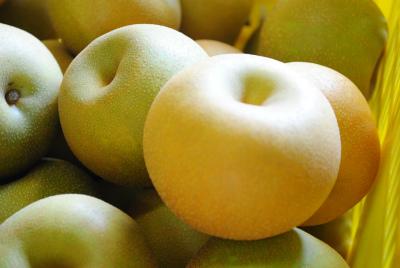 よねくらの梨